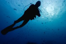[Outbound]: Getting Scuba Certified in the Philippines