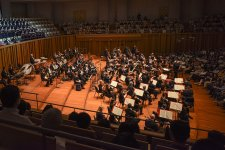 [The Collection]: Where to Watch Classical Music in Shanghai