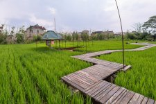 We Went Camping at This Great Farm on Chongming Island